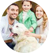 Pet Blog For Dog & Cat Parents