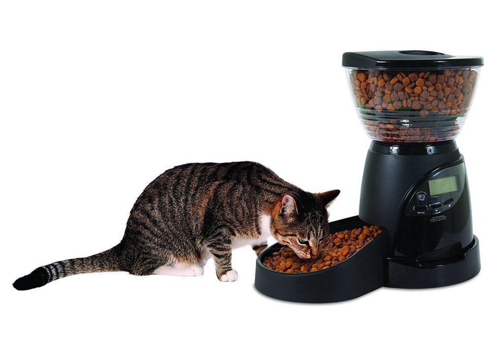 aspen pet automatic feeder