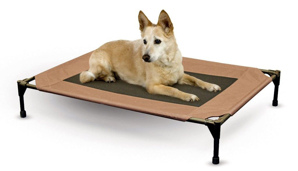 Pet Beds for Large Dogs