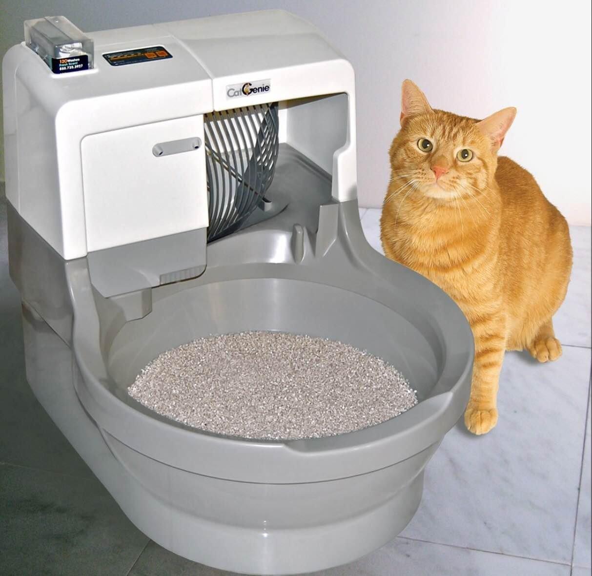 cat-genie-review