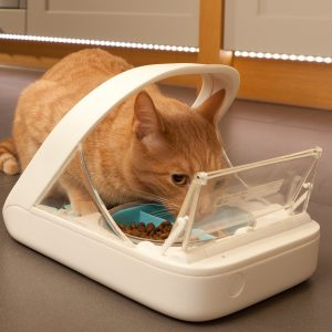 surefeed-microchip-pet-feeder-review